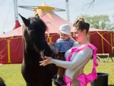 Circus Bernardo puft uit in Apeldoorn