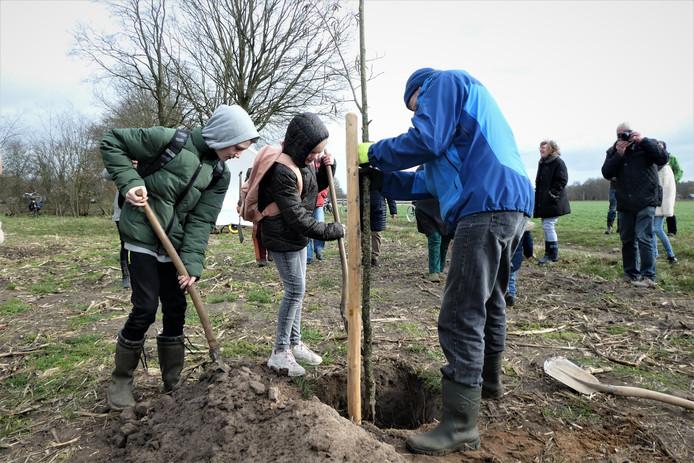 Kinderen van vier scholen uit Berlicum en Middelrode planten de eerste elzen bij het voedselbos.