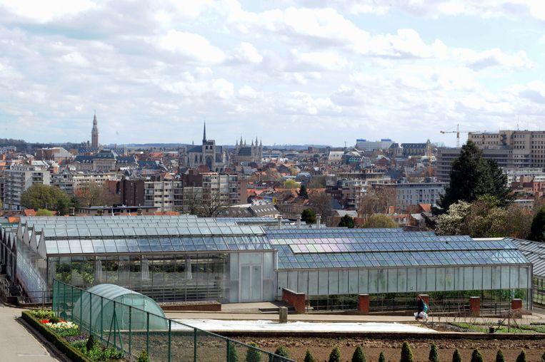 De Wijnpers in Leuven is de meest vogelrijke school van Vlaanderen.