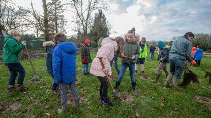 140 kinderen helpen 3.300 bomen en struiken planten in de Wolfsputten