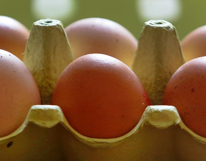 Nederlandse eieren werden geweerd in het buitenland tijdens de fipronil-crisis.