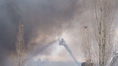 Brand in wafelfabriek Vorst: rook licht toxisch, treinverkeer in Brussel-Zuid zwaar verstoord