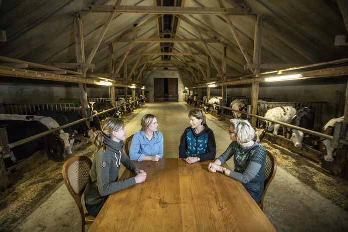 De ervencoaches in Noordoost-Twente: Armanda Lenferink, Neeltje Bleumink, Ursula Hesselink en Martine van Burgsteden (van linksaf) in gesprek aan de keukentafel.