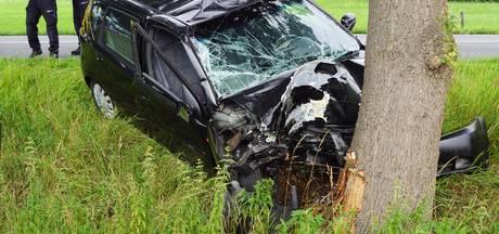Auto total loss bij frontale botsing tegen boom