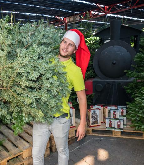 Het is nog september, maar hier worden de kerstbomen al opgetuigd