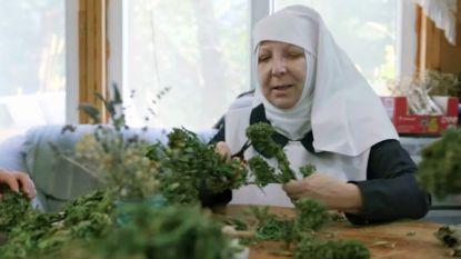 Bidden en blowen: cannabis kwekende nonnen stellen documentaire voor in Cannes