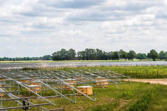 Overal op het terrein staan grote pallets met zonnecollectoren, klaar om gemonteerd te worden.