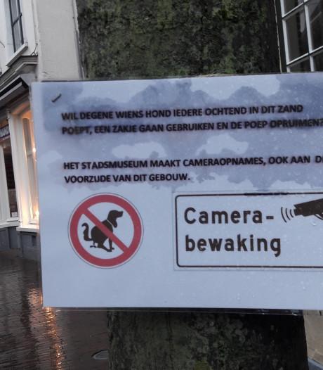 Museum Harderwijk: ruim hondenpoep op aub En wat doet het baasje?