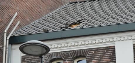 Dakpannen van dak gewaaid in Breda