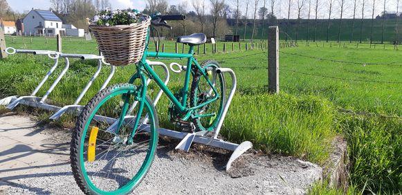 De groene fietsen met bloemenmandjes staan opgesteld aan bushaltes, in voortuintjes en op openbare plaatsen.