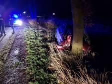 Automobilist gewond door frontale botsing op boom