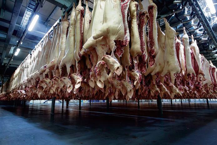Als varkensvlees tijdens het verwerkingsproces niet goed wordt verhit, overleeft de salmonellabacterie.
