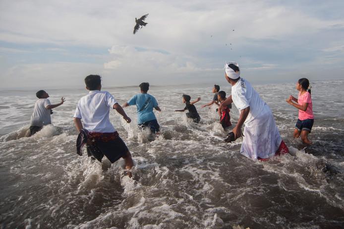 Een Balinese hindoe geeft een offervogel zijn vrijheid terug tijdens een Melasti-zuiveringsceremonie voor de heilige dag van Nyepi, op Purnama Beach, op het Indonesische eiland Bali. Foto Nyoman Budhiana