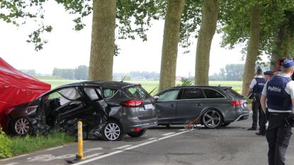 Automobilist volledig verantwoordelijk voor dodelijk ongeval door overdreven snelheid