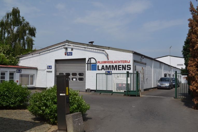 Pluimveeslachterij Lammens