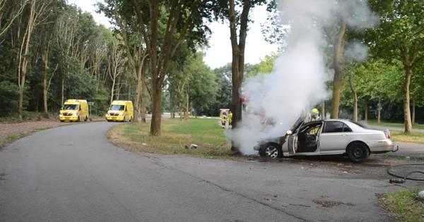 Auto vliegt in brand door botsing tegen boom in Ewijk, inzittende gewond.