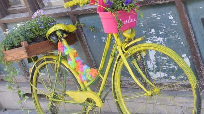 Gepimpte fietsen fleuren Overleie op