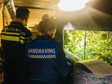 Hennepkwekerij opgerold in bedrijfspand in Nieuwersluis