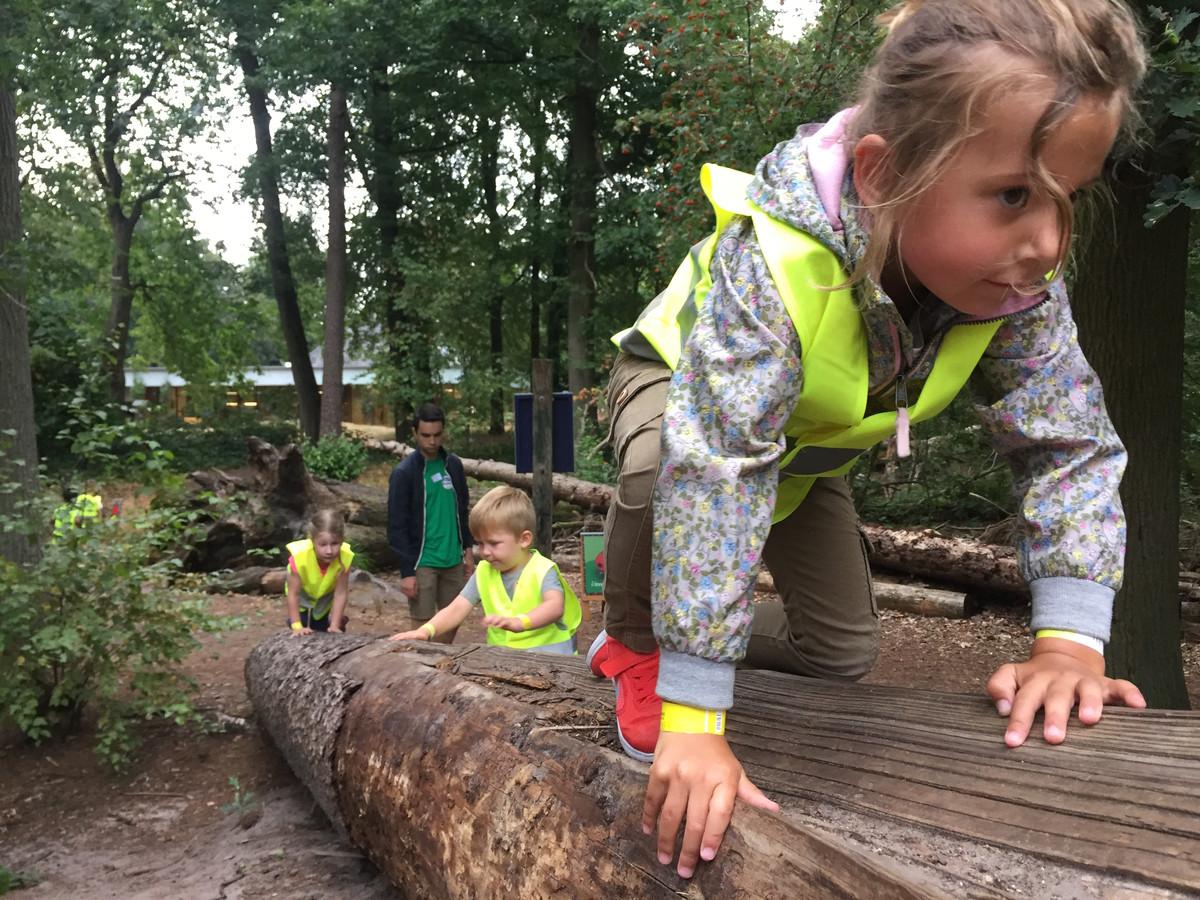 Klimmen en klauteren in Oisterwijk, het uitstapje tijdens Kindervakantieweek Berkel-Enschot