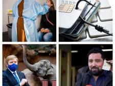 Gemist? Dierenvriend Hamza krijgt geld voor nieuwe kippen en Rotterdamse coronapatiënt 'uit zijn lijden verlost'