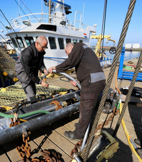 Vissen met waterstraaltjes is mogelijk oplossing voor pulsvissers