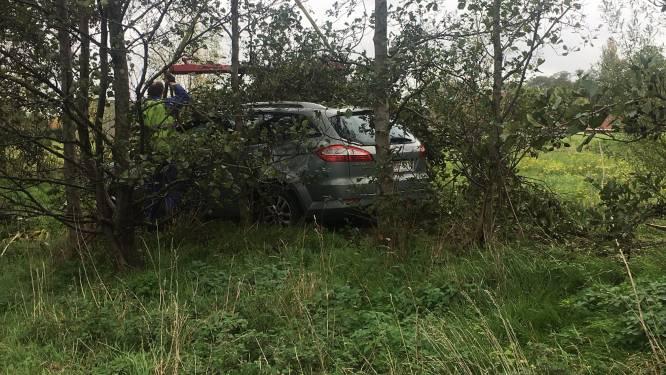 """Automobilist belandt tussen bomen en struiken langs E17 in Waregem: """"Moest niezen en hoesten"""""""