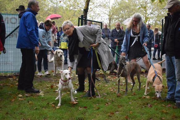 Tientallen honden kwamen samen met Tuur de nieuwe losloopweide openen.