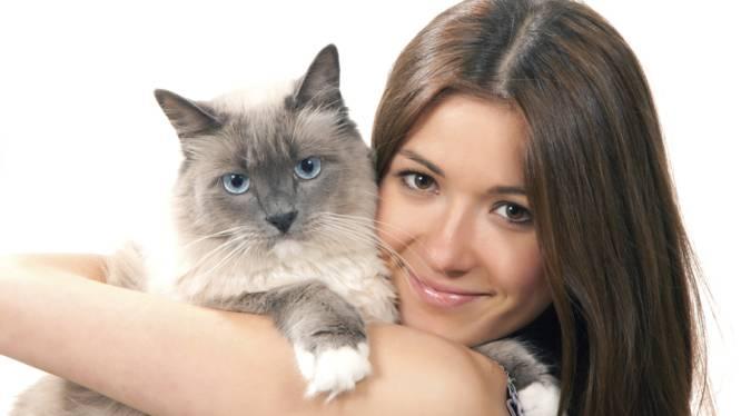 Apporteren kan je leren: ook voor katten