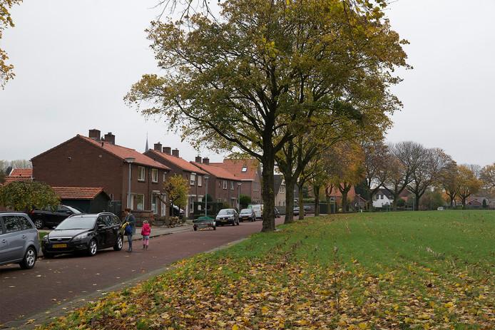 De Ursulastraat in Harreveld met rechts de maisakker waarop de bewoners uitkijken. foto Theo Kock