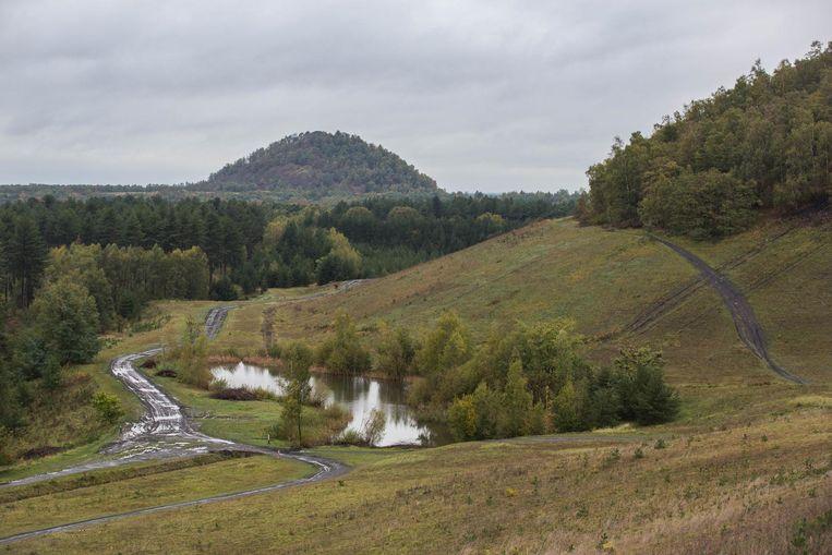 Het Nationaal Park Hoge Kempen.