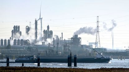 Boze burgers dagvaarden Vlaanderen om alarmerende luchtkwaliteit