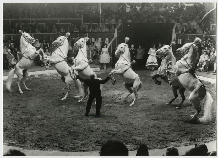 Circus Strassburger in 1955.