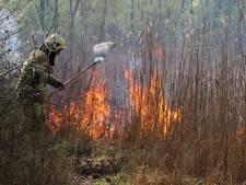 Brand in het Urkerbos op Urk