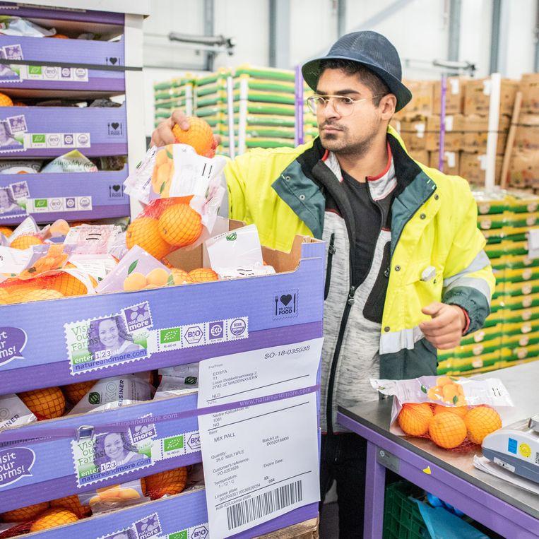 Een werknemer van Eosta controleert in het magazijn fruit op kwaliteit.  Beeld Simon Lenskens