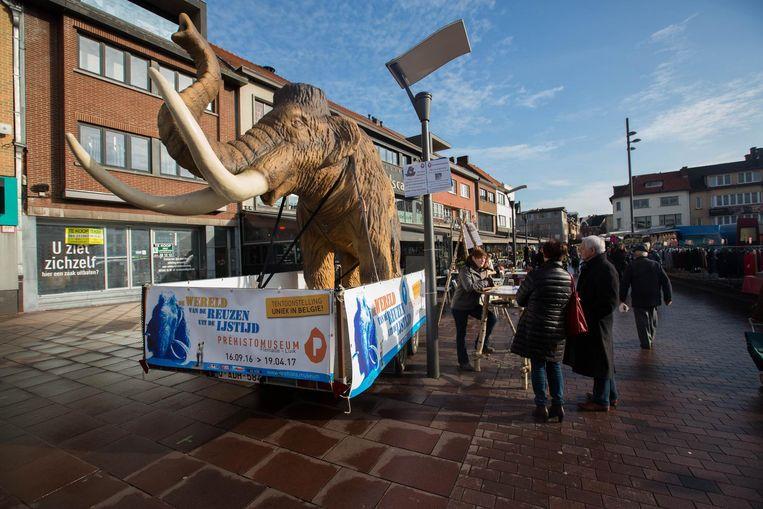 De mammoet op de markt in Genk lokte heel wat kijklustigen.