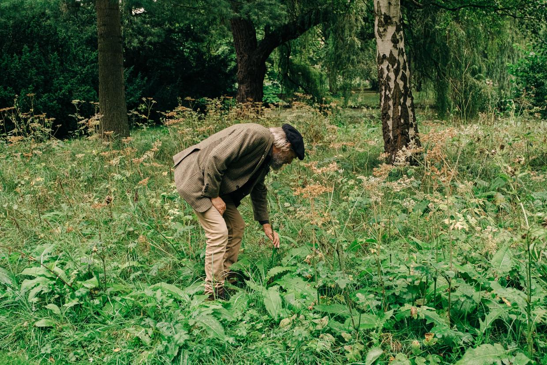 Bart Backaert van de Aalsterse groendienst inspecteert
