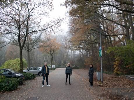 De vraag is: willen we hoge oude bomen of een drie verdiepingen tellende parkeergarage in het centrum van Ermelo?