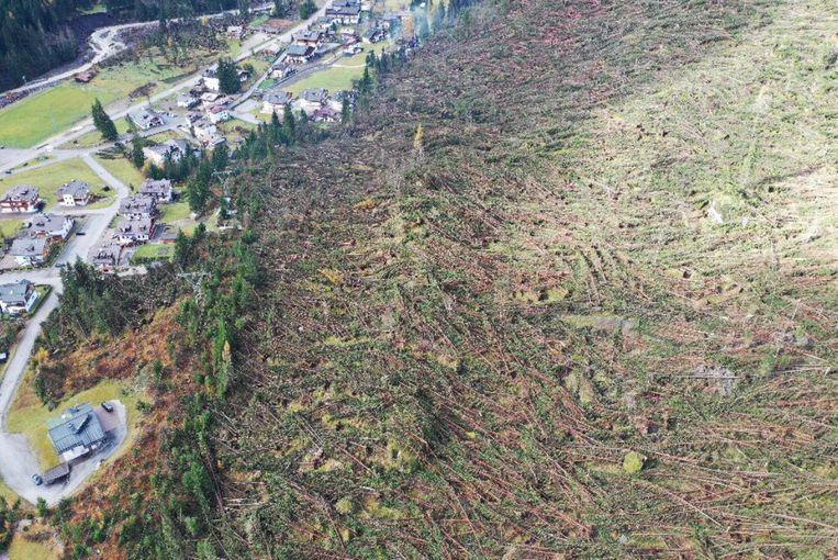 Apocalyptische toestanden na noodweer Italië. Veertien miljoen bomen ontworteld