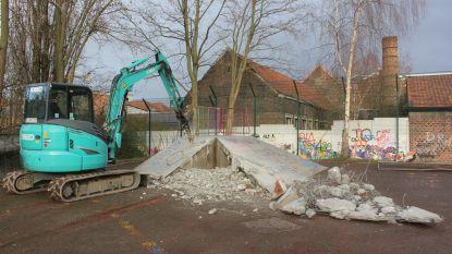 Stad sloopt skateterrein Sint-Elisabethwijk