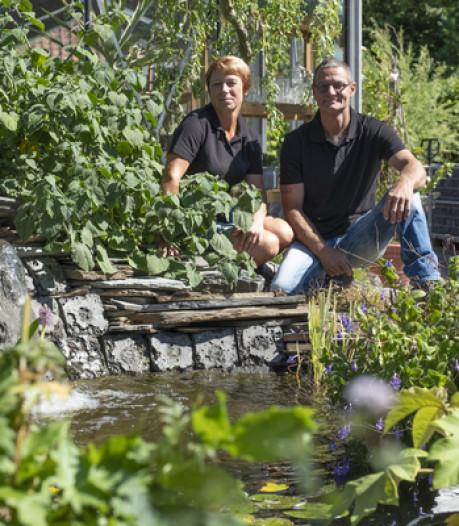 Feest bij vijvercentrum en natuurpark in Dreischor: 't Groene Kikkertje springt uit de band