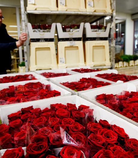 Bloemisten zitten op rozen: omzet stijgt