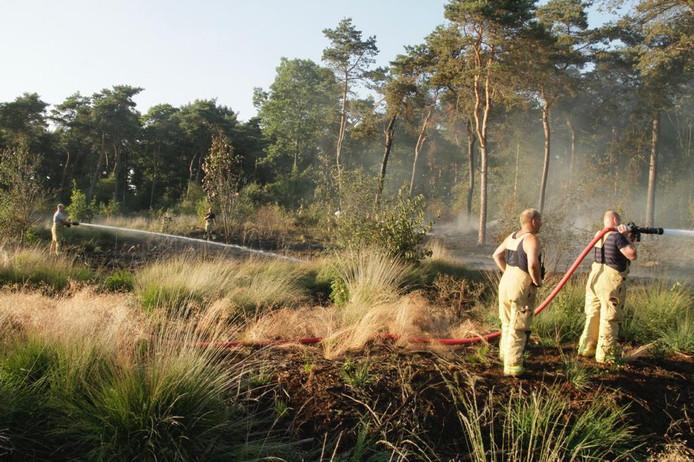 Twee hectare bos in vlammen op in Mariahout