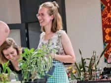 Zo kun je 'dode' planten weer tot leven wekken