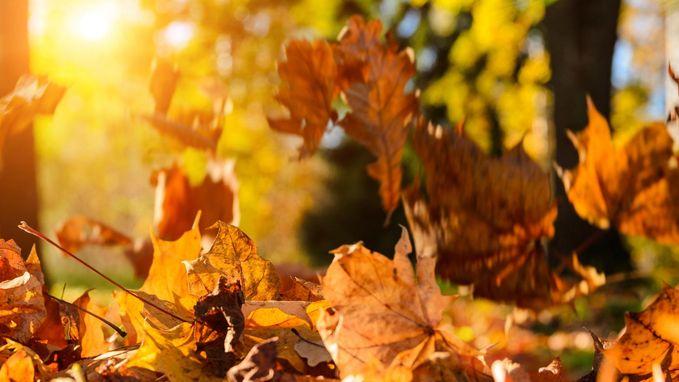 Vandaag nog zonnig en zacht tot 22 graden, maar de herfst loert om de hoek