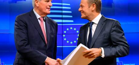 Het brexit-akkoord onder de loep