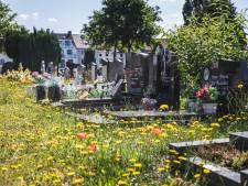 """Gentse begraafplaatsen moeten netter: """"Niet terug naar 'pelouses', maar het moet wel verzorgd zijn"""""""