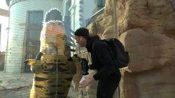 Antwerpse Zoo niet te spreken over actie Nederlandse Youtubers die dierenverblijf binnendringen