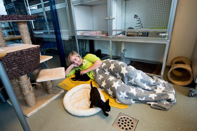 Nicole Kouwen van dierenasiel Kuipershoek waar mensen binnenkort kunnen blijven slapen.
