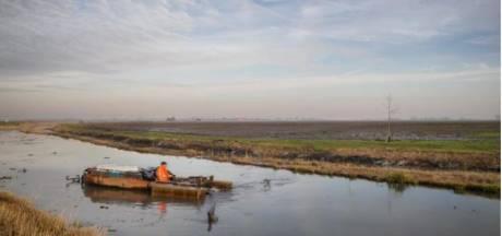 Inwoners Hoeksche Waard en Voorne-Putten moeten knip trekken voor hun illegale tuintjes