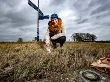 'Rebelse' Tessel maakt 'saaiste rotonde van Nederland' op eigen houtje mooier, provincie niet blij